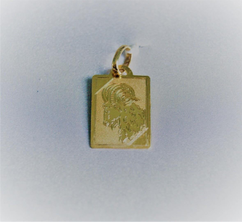 Gouden steenbokhanger 2